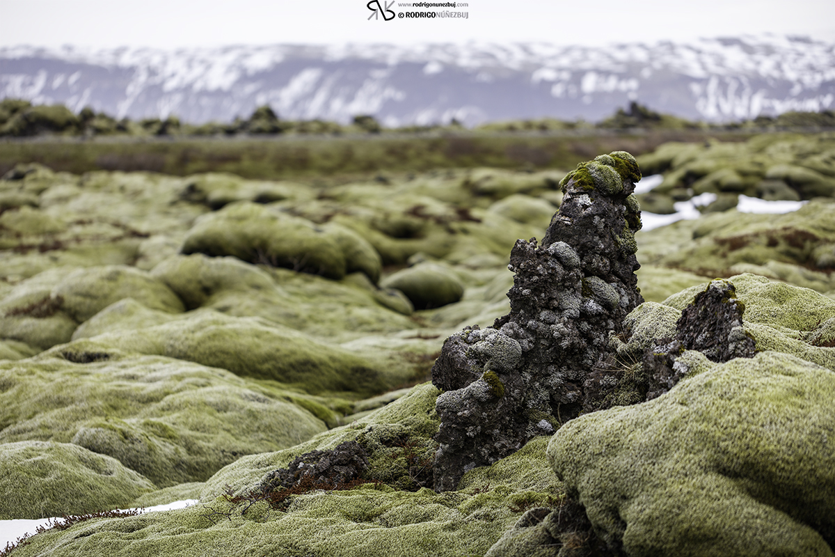 Campos de lava de Eldhraun